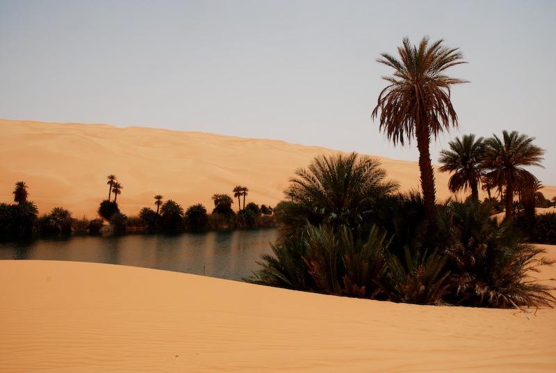 Tunisie oasis