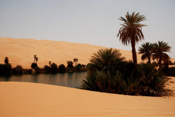 TUNISIE-OASIS-au-milieu-de-desert-Photo-Alain-ROSSIGNOL