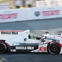 ALMS-2013-HPD-Team-MUSCLE-MILK-PICKETT-Klaus-GRAF-a-LONG-BEACH