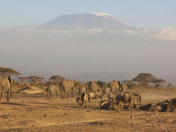 SAFARI-2013-La-reserve-de-SERENGETTI-en-Tanzanie.
