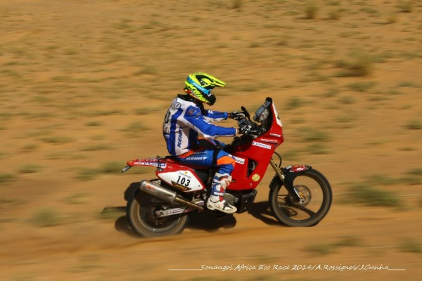 MICHAEL PISANO WINNER 2014