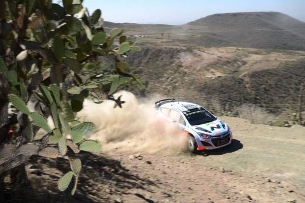 WRC-2014-MEXIQUE-Thierry-Neuville-Team-Hyundai-