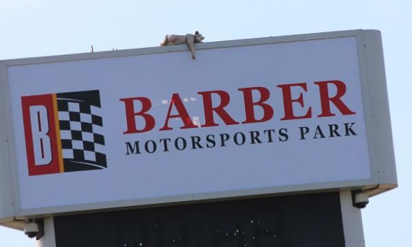 INDYCAR-2014-Circuit-de-BARBER