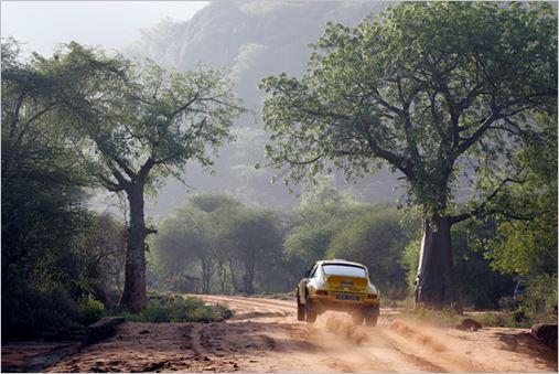SAFARI KENYA 2013 PORSCHE TUTHIIL de BJORN WALDEGAARD