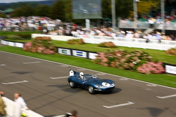 GOODWOOD-REVIVAL-2014-Belle-démonstration-de-Fabien-Sarrailh-avec-une-Jaguar-D-Type-long-nose-de-Frédéric-Collot