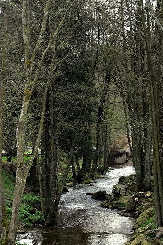 F1 2014 CIRCUIT DE SPA - Le ruisseau Eau Rouge au coeur du circuit de FRANCORCHAMPS - Photo PUBLIRACING