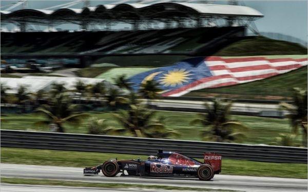F1-2015-SEPANG-TORO.-Les-ROSSO-RENAULT-devant-les-RED-BULL-RENAULT