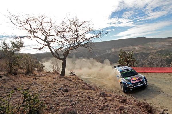 WRC-2015-MEXIQUE-Seb-OGIER-remporte-le-SHAKEDOWN