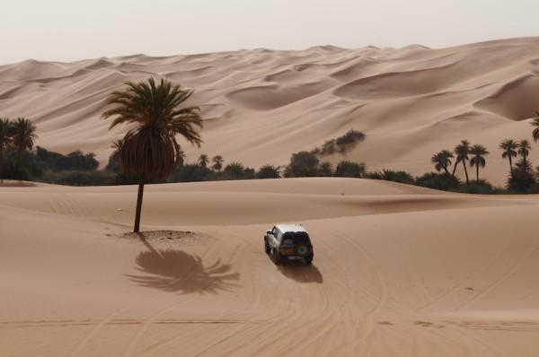 RALLYE  de TUNISIE 2015  Au cœur des dunes