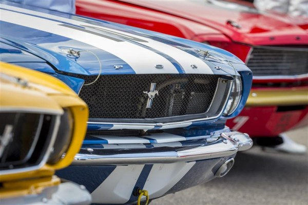 GOODWOOD-REVICAL-2014-fete-les-50-ans-de-la-MUSTANG.