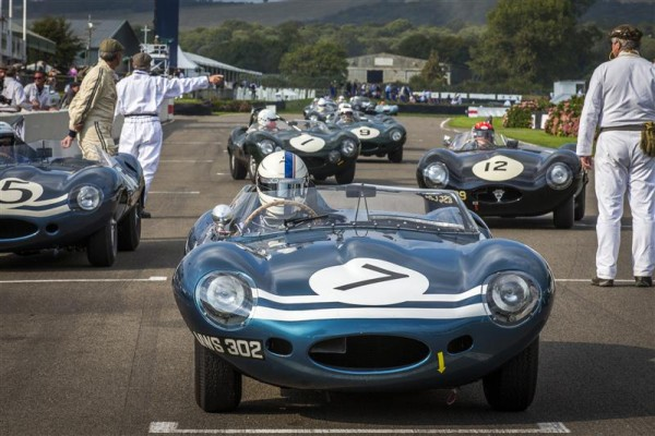 GOODWOOD-REVIVAL-2015-LES-JAGUAR-TYPE-D