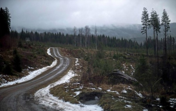 WRC-2016-Le-rallye-de-SUEDE-sans-neige