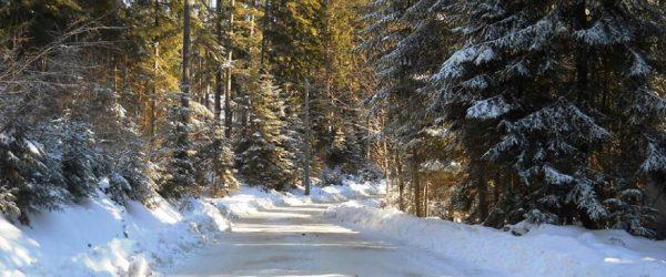 Au-cœur-des-Carpates-en-Transylvanie-la-région-la-plus-froide-de-Roumanie-le-1er-Roumanie-Historic-Winter-Rallye